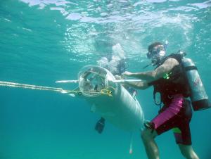 ocean careers in ocean engineering