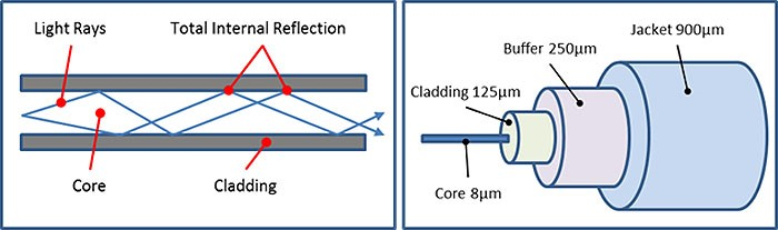 The left shows total internal reflection, which happens because the material the cladding is made of (show on the right) has a lower index of refraction than the core.