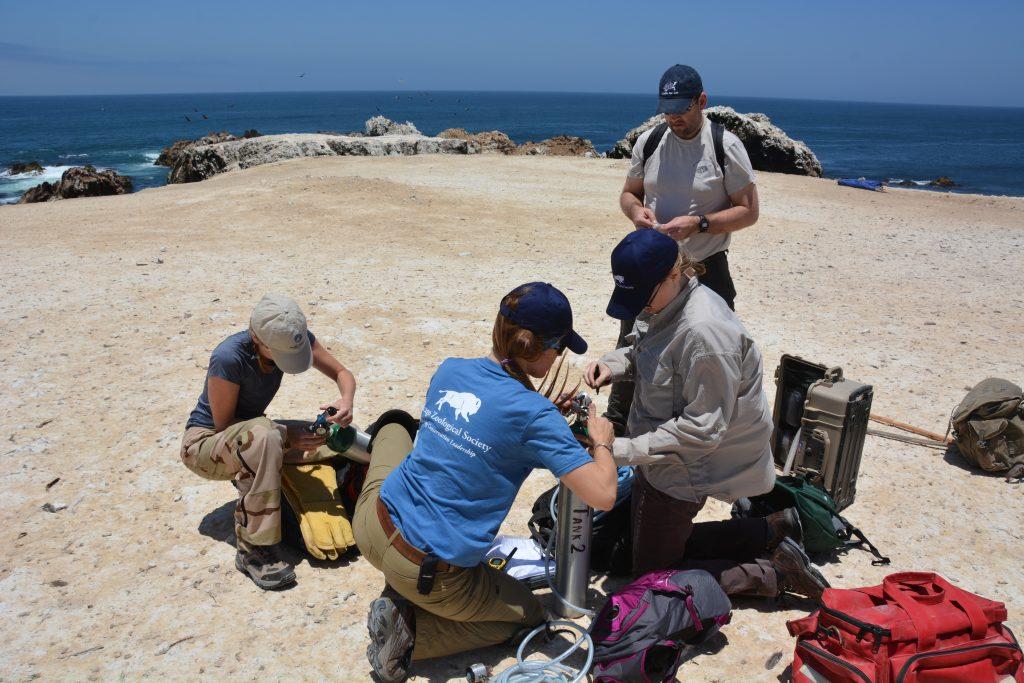 Research Peru