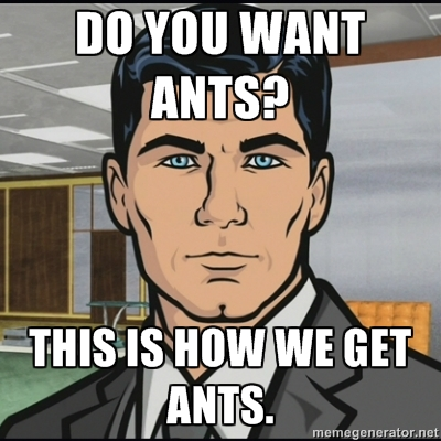 do_you_want_ants